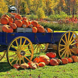 Allen Beatty - Pumpkin Still Life