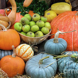 Pumpkins and Fruit - Tim Gainey