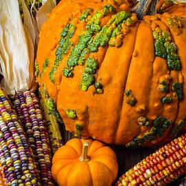Pumpkins And Indian Corn Harvest - Garry Gay