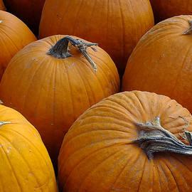 Bill Morgenstern - Pumpkins