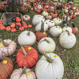 Pumpkins for sale - Edward Fielding