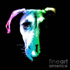 Gregory DUBUS - Puppy dog head portrait colors art
