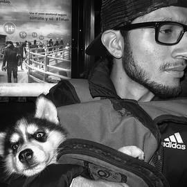 Daniel Gomez - Puppy Love master  2