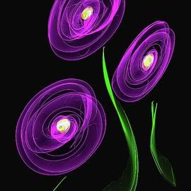 Diana Mary Sharpton - Purple Blooms