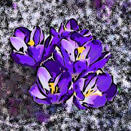 Bruce Nutting - Purple Crocuses