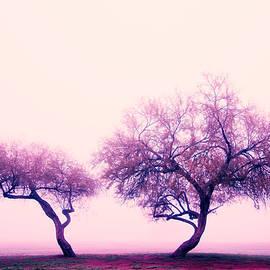 Ed  Cheremet - Purple Fantasy