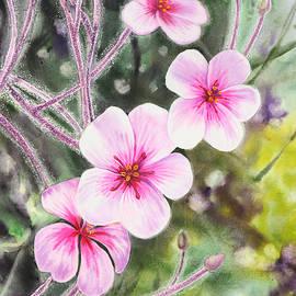 Irina Sztukowski - Purple Flowers In Golden Gate Park San Francisco