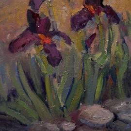 R W Goetting - Purple iris in shade
