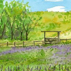 Cathie Richardson - Purple Lupines Pasture