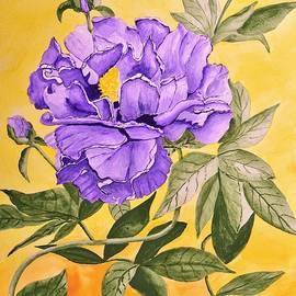 Linda Brody - Purple Peony