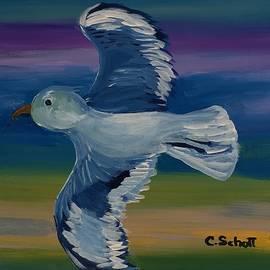 Christina Schott - Quick Gull