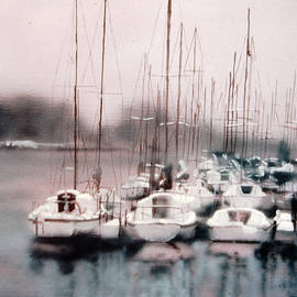 David Zimmerman - Quiet Harbor