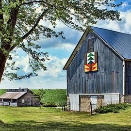 Nikolyn McDonald - Quilt Barn - Nebraska - Forest for the Trees