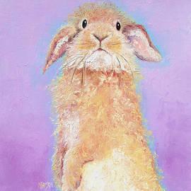 Jan Matson - Rabbit Painting - Babu