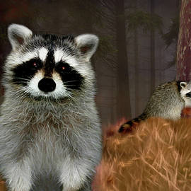 Ericamaxine Price - Racoon Forest-Painted