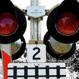 Nina Silver - Railway Rambling and Infrared