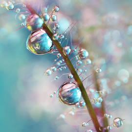 Sharon Johnstone - Rainbow Blue Smokey Drops