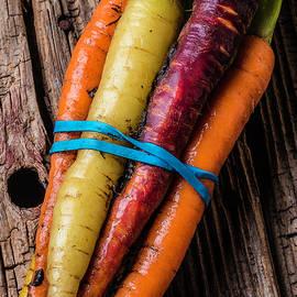 Rainbow Carrots - Garry Gay