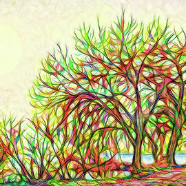 Joel Bruce Wallach - Rainbow Light Trees - Boulder County Colorado