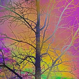 Kathy Franklin - Rainbow Sky