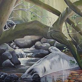 Merrin Jeff - Rainforest Stream