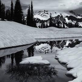 Mike Dawson - Rainier Winter Reflections