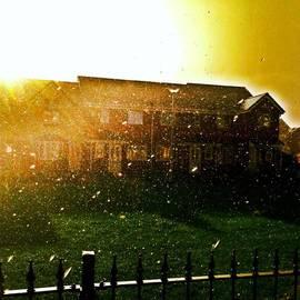 Skulova Katka - #rain#sun#feeling