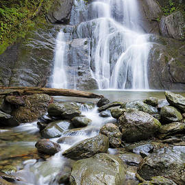 Alan L Graham - Rainy Day Moss Glen Falls