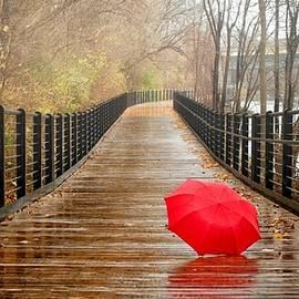 Richard Wallace - Rainy Day