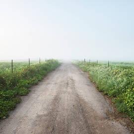 William Dunigan - Ramona Foggy Morning