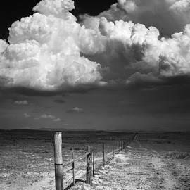 William Dunigan - Ramona Monsoon Field