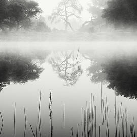 William Dunigan - Ramona Pond