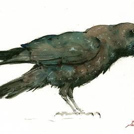 Raven bird - Juan Bosco