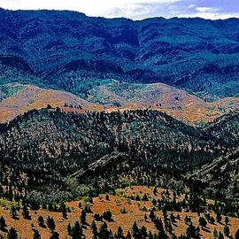 Ronald Rockman - Razorback Mountain Range