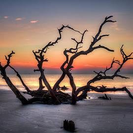 Reid Callaway - Reaching Driftwood Beach Sunrise Jekyll Island Georgia