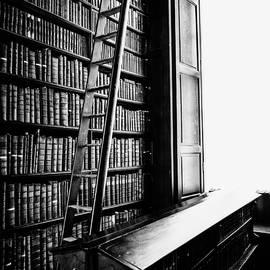 Scott Pellegrin - Reading Light