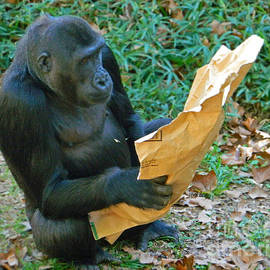 Emmy Marie Vickers - Reading The Paper Bag I