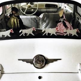 Julian Darcy - Rear window