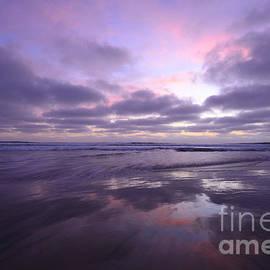 John Tsumas - Cardiff Reflections