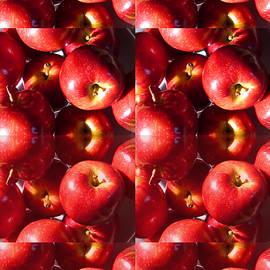 Tina M Wenger - Rectangle Apples
