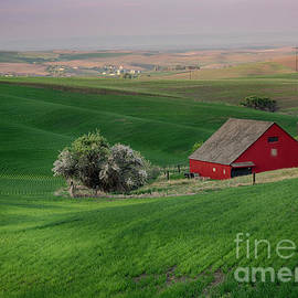 Idaho Scenic Images Linda Lantzy - Red and Green