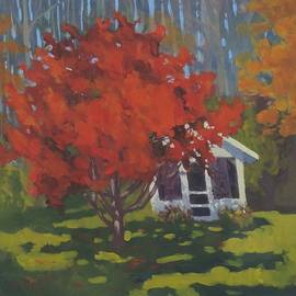 Bill Tomsa - Red and Shed