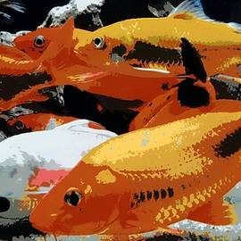 Red and White Fishes