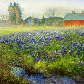 R christopher Vest - Red Barn And Blue Bonnet Spring