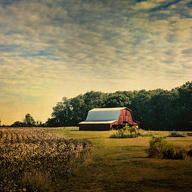 Jai Johnson - Red Barn At The Cottonfield