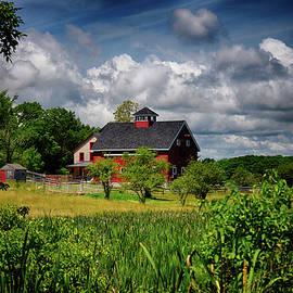 Tricia Marchlik - Red Barn Hill