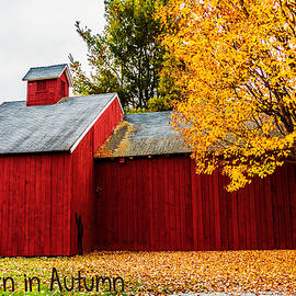 Black Brook Photography - Red Barn In Autumn