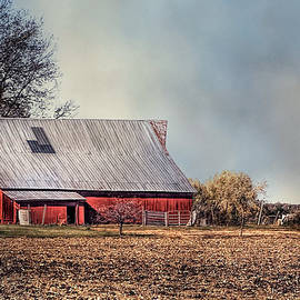 Theresa Campbell - Red Barn In Late Fall