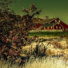 Mim White - Red Barn