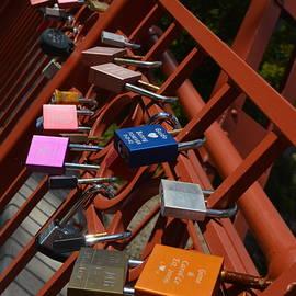 Carolina Liechtenstein - Red Bridge Engagement Commitment 1
